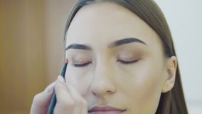 Augenverfassungsfrau, die Augenschminkepuder anwendet Schönes Frauengesicht Perfektes Make-up Schönheitsmode eyelashes kosmetik stock video footage