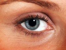 Augenzusammenfassung Stockbilder