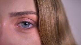 Augeporträt der Nahaufnahme eine der blonden kaukasischen jungen Frau, die ruhig und direkt in Kamera auf grauem Hintergrund aufp stock video