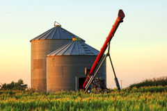 Auger and Grain Bins. Pair of grain bins and an auger in the middle of a field Stock Images