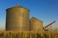 Auger and Grain Bins. Pair of grain bins and an auger in the middle of a field Stock Photo