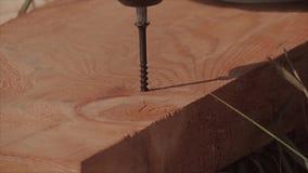 Auger kawałka wiertniczy drewno zdjęcie wideo
