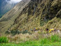 Augmentez sur le chemin pavé par Inca Trail antique à Machu Picchu peru Aucune personnes Photos stock