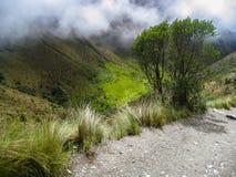 Augmentez sur le chemin pavé par Inca Trail antique à Machu Picchu peru Aucune personnes Photo stock