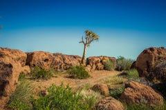 Augrabies cai cabo do norte África do Sul do parque nacional Imagens de Stock