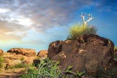 Augrabies cai por do sol do norte de África do Sul do cabo do parque nacional Imagens de Stock Royalty Free