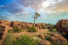 Augrabies cai por do sol do norte de África do Sul do cabo do parque nacional Foto de Stock Royalty Free