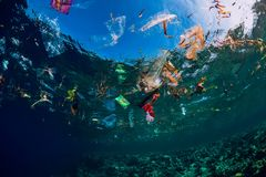 Free August 28, 2018. Bali, Indonesia. Underwater Ocean With Plastic And Plastic Bags, Ecological Problem Royalty Free Stock Photos - 160518908