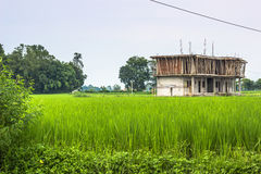 August 26, 2014 - Children home in Sauraha, Nepal Royalty Free Stock Image
