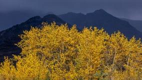 25. August 2016 - Herbstfarbe und Unheil verkündende Berge im Abstand werden weg von Richardson Highway, Weg 4, nördlich Paxon, l Stockfotografie