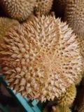 15. August 2016 Kuala Lumpur Das Beste von Durian: Der Musang König Stockfotografie