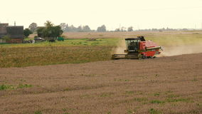2016 August 21, Lithuania, Ukmerges region. Harvester machine to harvest wheat field working. Agriculture stock video footage