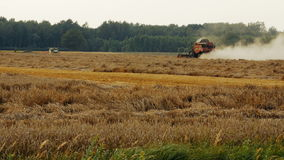 2016 August 21, Lithuania, Ukmerges region. Harvester machine to harvest wheat field working. Agriculture stock video