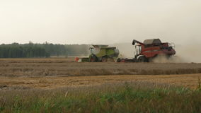 2016 August 21, Lithuania, Ukmerges region. Two Harvesters machine to harvest wheat field working. Agriculture. 2016 August 21, Lithuania, Ukmerges region stock footage