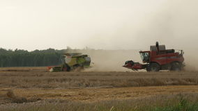 2016 August 21, Lithuania, Ukmerges region. Two Harvesters machine to harvest wheat field working. Agriculture stock video footage