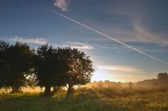 August morning Stock Images