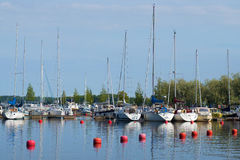 August morning in the marina of Lappeenranta sity, Finland Royalty Free Stock Image