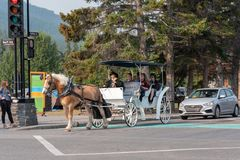 Horse and Carriage Ride in Banff. August 2, 2018--Tourists go for a ride through Banff on a horse drawn carriage Royalty Free Stock Photo