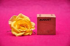 August on a wooden block with a yellow rose. On a pink background stock photo