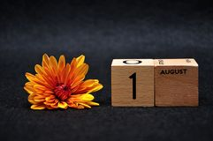 1 August on wooden blocks with an orange daisy. On a black background stock photography