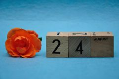 24 August on wooden blocks with an orange rose. On a blue background stock image