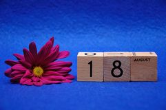 18 August on wooden blocks with a purple daisy. On a blue background stock photos