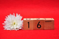 16 August on wooden blocks with a white daisy. On a red background royalty free stock photography