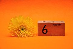 6 August on wooden blocks with a yellow daisy. On an orange background royalty free stock photo