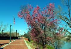 Augusta River Walk Stock Photos