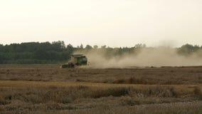 2016 Augusti 21, Litauen, Ukmerges region Skördearbetaremaskin som skördar arbete för vetefält Jordbruk arkivfilmer