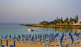 Augusti 2, 2017 Protaras Stolar med paraplyer på stranden i fikonträd skäller i Protaras cyprus Arkivbild