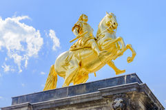 Augustus II the Strong  statue in Dresden Stock Image