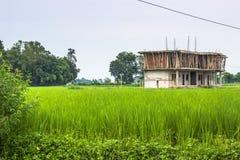26 augustus, 2014 - Kinderenhuis in Sauraha, Nepal Royalty-vrije Stock Afbeelding