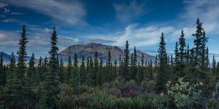 26 AUGUSTUS, 2016 - Landschapsmeningen van Centrale Waaier Van Alaska - leidt 8, Denali-Weg, Alaska, biedt een landweg overweldig Stock Foto