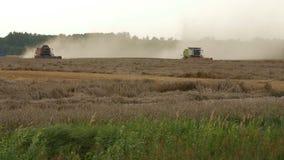 2016 21 Augustus, Litouwen, Ukmerges-gebied Twee Maaimachinesmachine om tarwegebied het werken te oogsten Landbouw stock footage
