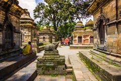 18 augustus, 2014 - Pashupatinath-Tempel in Katmandu, Nepal Stock Afbeeldingen