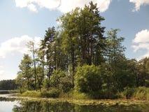 AukÅ-¡ taitija Nationalpark (Litauen) Stockbild