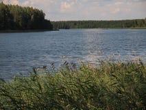 AukÅ ¡ taitija park narodowy (Lithuania) Zdjęcia Royalty Free