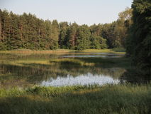 AukÅ ¡ taitija park narodowy (Lithuania) Zdjęcie Royalty Free