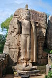 Aukana/Avukana Buddha stockbild