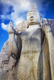 Aukana Buddha, Sri Lanka Royalty Free Stock Photo