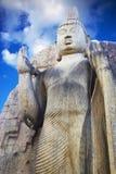 Aukana Buddha, Sri Lanka Foto de archivo libre de regalías