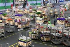Auktionsboden Aalsmeers an der FloraHolland-Blumenauktion lizenzfreie stockfotografie