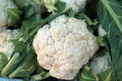 Auliflower fresco del  di Ñ verdure alimento dietetico Verdure per cucinare Immagine Stock