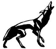 Aullido del lobo Imagenes de archivo