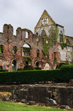 Aulne Abbey ruin - Belgium. Ruins of the Aulne Abbey in Belgium Royalty Free Stock Photos