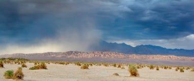 Aumentare della tempesta di sabbia della primavera fotografie stock