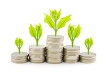 Aumente suas economias Foto de Stock Royalty Free