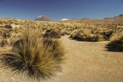 Aumento al vulcano attivo Misti fotografie stock libere da diritti