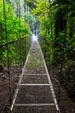 Aumento in Costa Rica Fotografia Stock Libera da Diritti